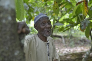 This is Sawadogo Adama, who is part of the CINPA Cooperative in Agboville. He has been a cocoa farmer for over 40 years and joined UTZ some years ago. He has two sons: Mahamadoy is also a cocoa farmer, and Moussa is the President of the Cooperative. Click here to learn more about Sawadago Adama and the CINPA Cooperative.